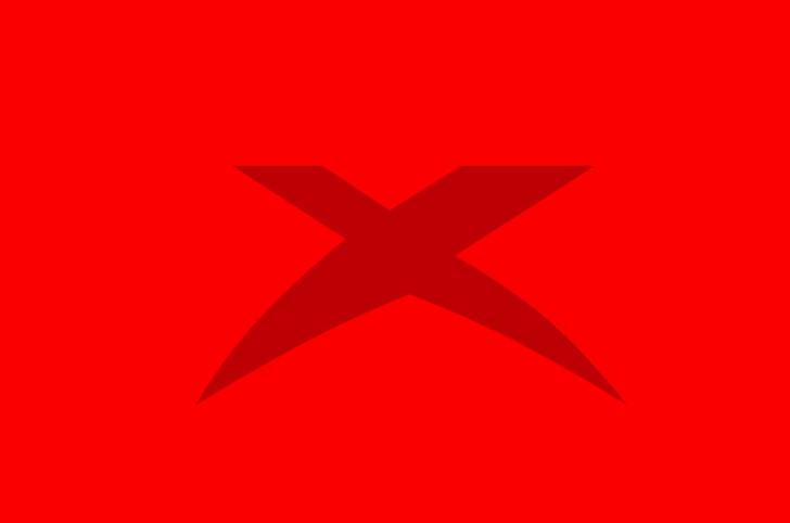 The X used by OMX from the last seasons. It's a familiar element of the team's brand.